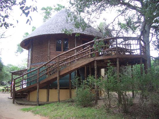 A Bush Break to Bolster Your Spirits – Bonamanzi Tree Houses